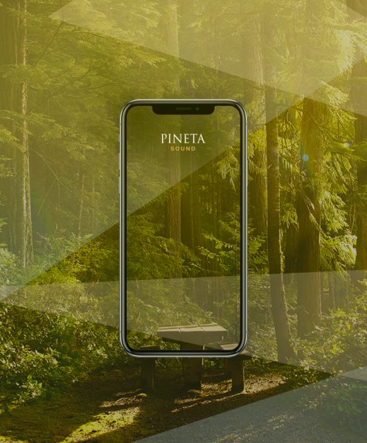 Pineta Sound